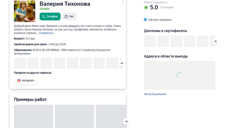 Создание и продвижение профиля Яндекс.Услуги